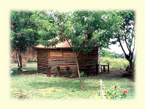 Pictures of caribs houses - House pictures